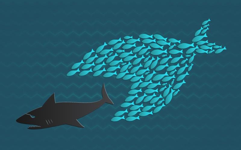 Together we stand: Little fish eats big shark illustration